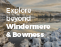 Buses in Windermere and Bowness